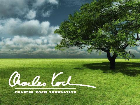 Portfolio-Koch-Foundation
